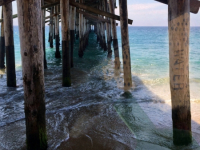 Water Signs - Balboa Pier